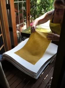 LBR pulling a Honey sheet